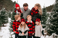 Winter Tree farm mini session ramsey minnesota photographer