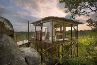 sunsafaris-kingston-treehouse