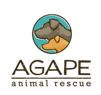 Agape new vertical logo