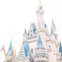 Disney World Wedding Photographer-1