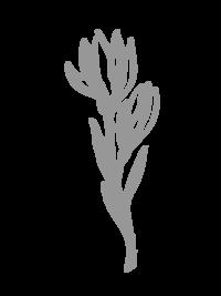 gray floral element-06
