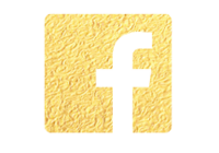 Social Media Icons Gold-01 copy 2