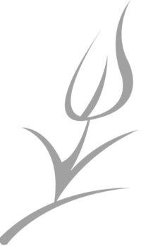 Deko Flora Line flora design floral and event design in seattle