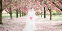 Brooklyn Botanical Garden Wedding-Cherry Blossoms-Amy Rizzuto Photography-25-3
