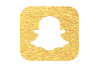 Social Media Icons Gold-01 copy