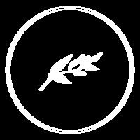 SECONDARY-LOGOwhite