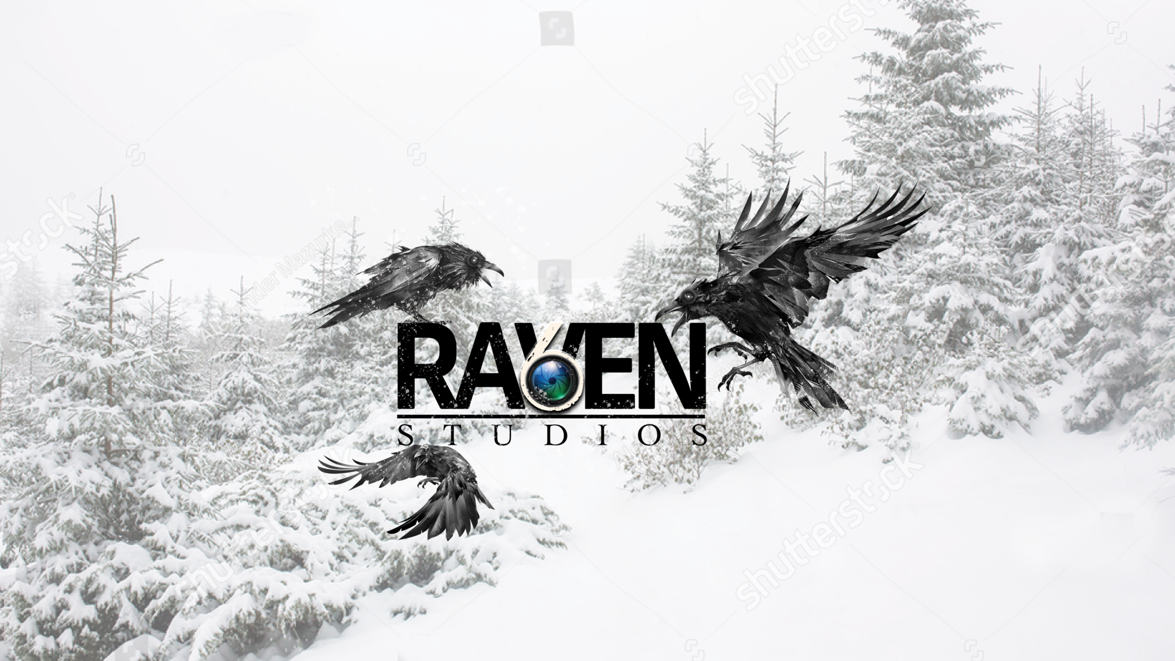 Smaller Snow RAVEN Logo