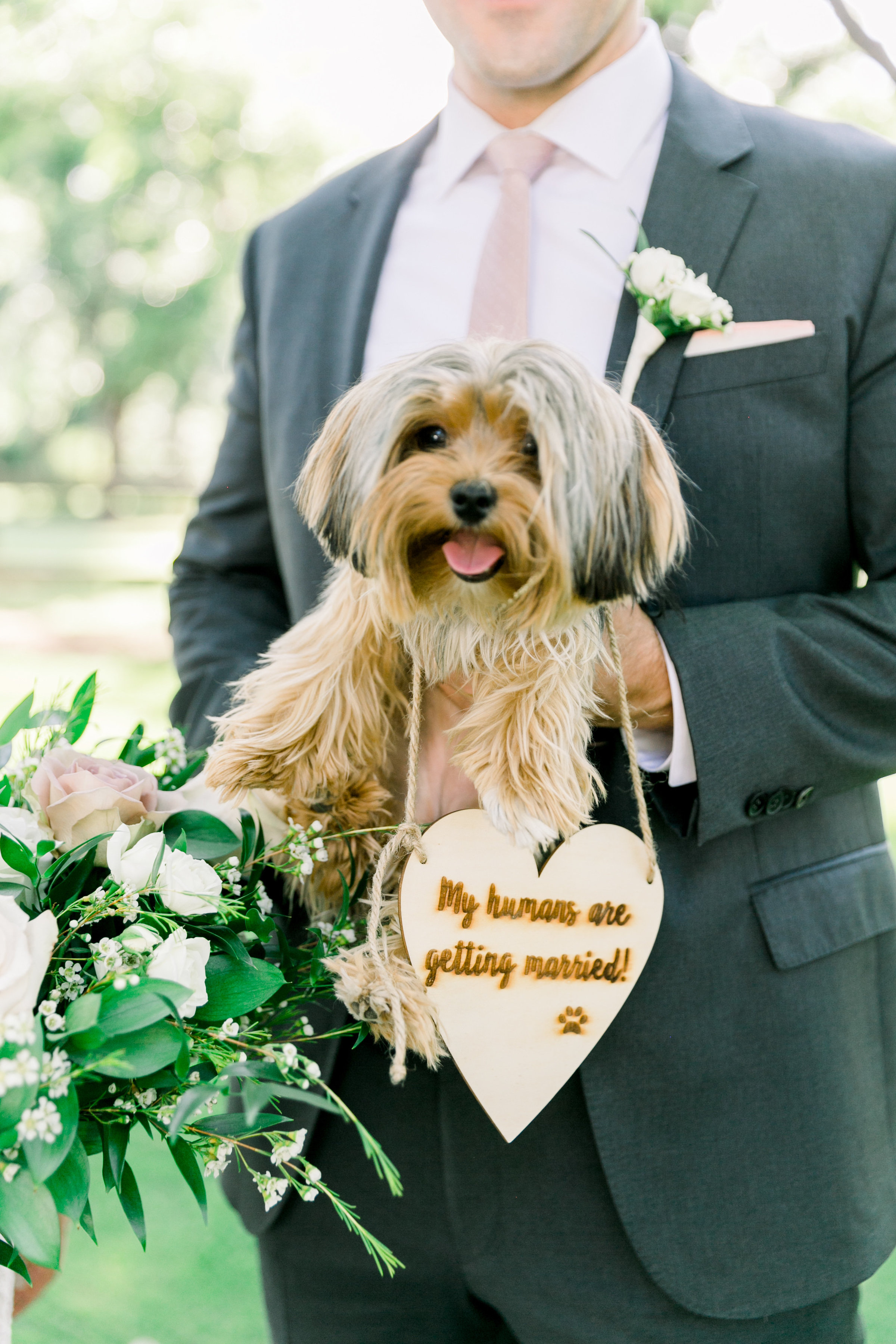 Karlie Colleen Photography - Arizona Wedding - Venue At The Grove - Maggie & Grant-385