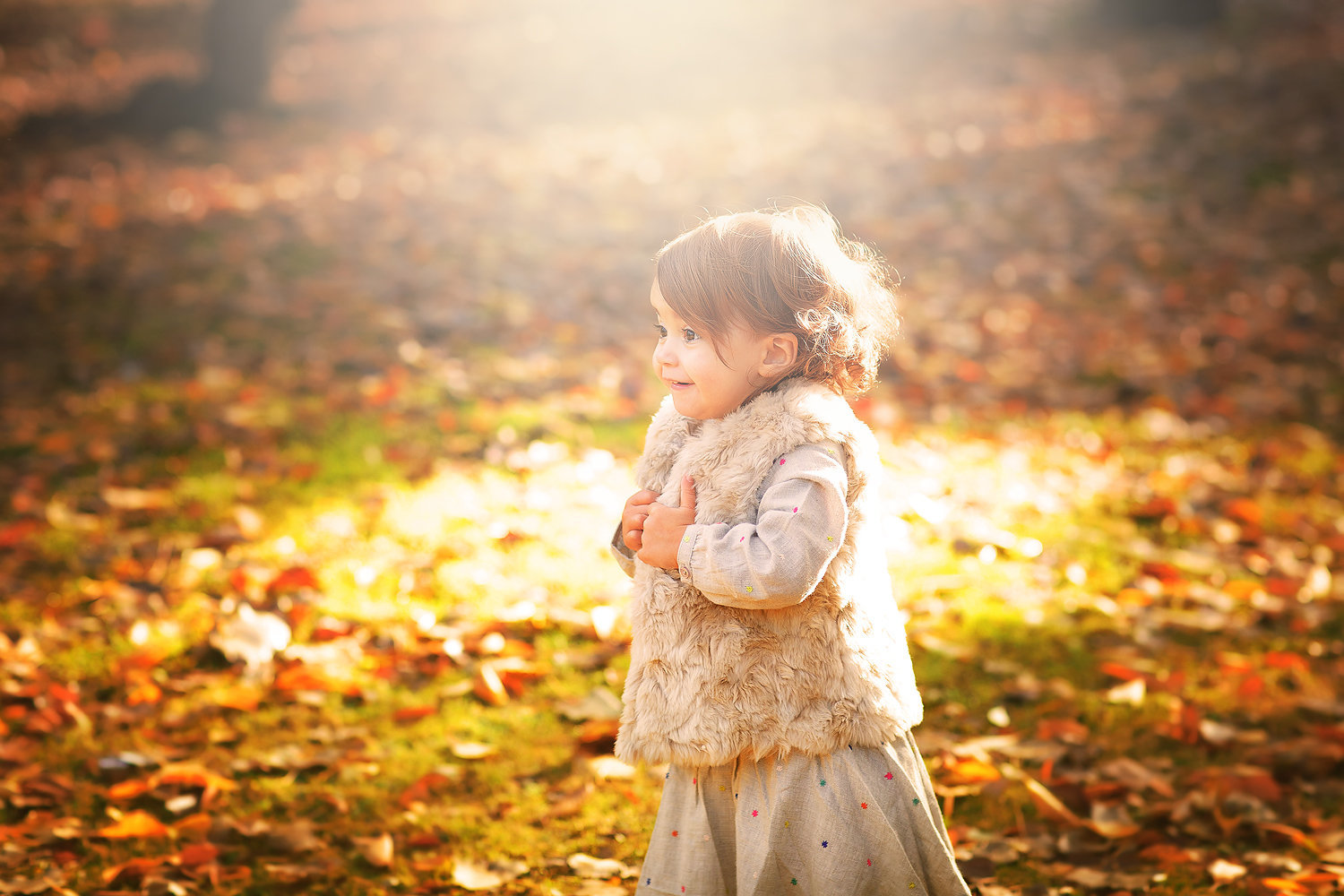 little girl autumn leaves sunlight