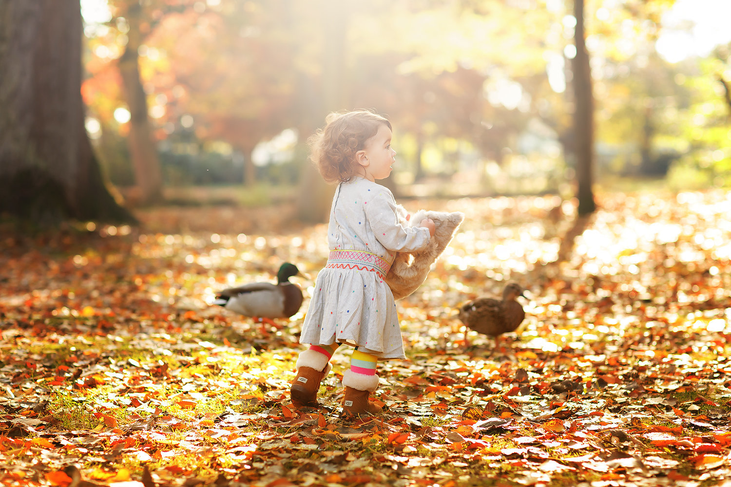 little girl in woods with ducks