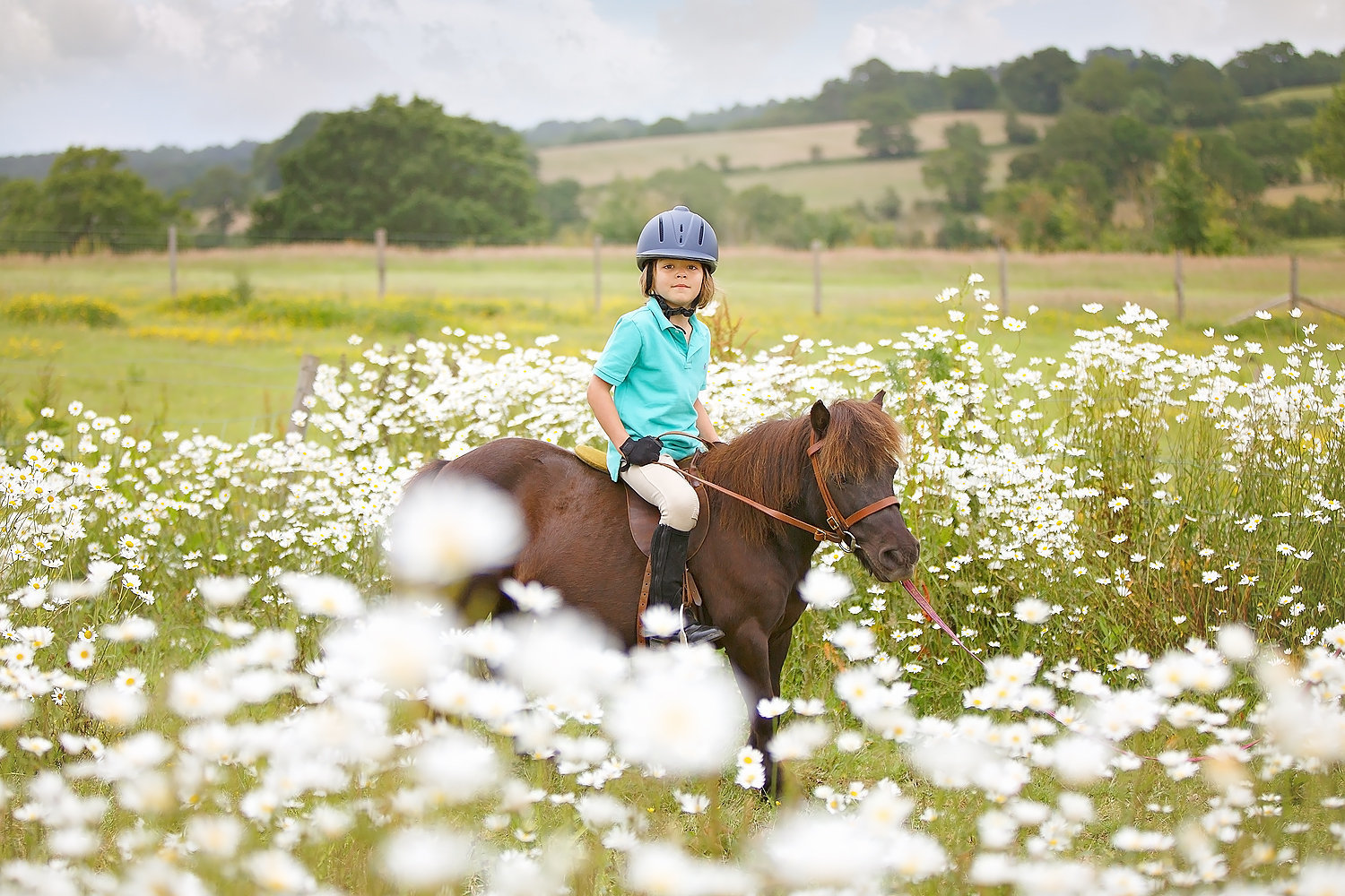 boy sitting on shetland pony daisy field
