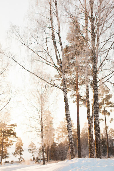 Maria_Sundin_Photography_Swedish_Winter_web-3