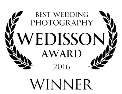 Wedisson award winner