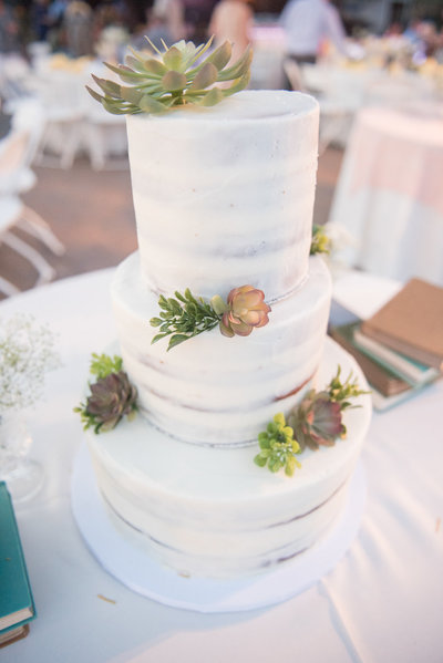 SUCCULENT CAKE Dreamy Yellow Bohemian Desert Wedding  |  Round Lens PhotographyMarch105