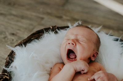 Ann Arbor Michigan Lifestyle  Newborn Photographer Amanda Dumouchelle