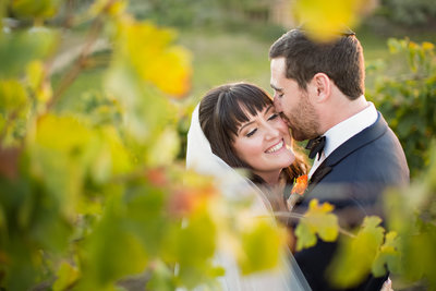 Bride and Groom kissing in vines at Callaway Winery