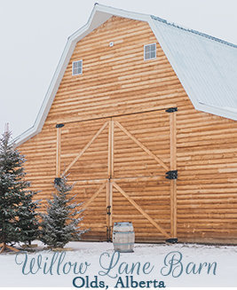 Willow Lane Barn Olds Alberta
