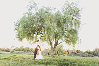 Creative portrait of bride and groom under tree in Orange County