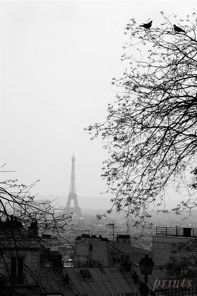 The Eiffel Tower stands amid budding trees
