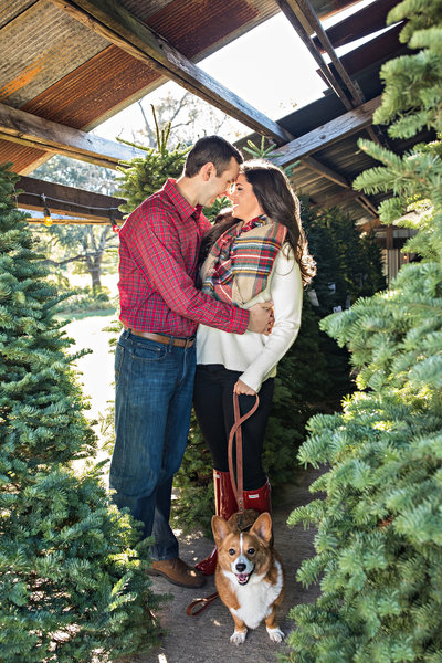 St. Francisville Christmas Tree Farm- Engagement Session- Wedding Photography-Suzy G Photography- Suzy G_0003