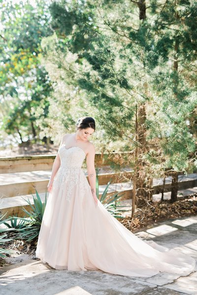 Madura Tea Estate Wedding Claire Elise Photography natural light wedding photography tamborine mountain gold coast northern rivers