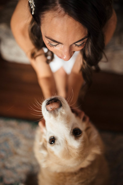Bride and dog photo