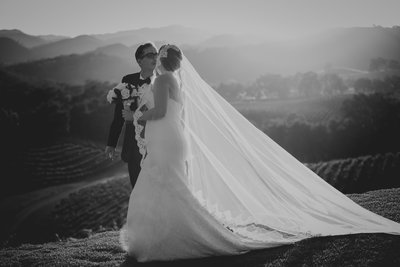 opolo_vineyards_wedding_by_pepper_of_cassia_karin_photography-136