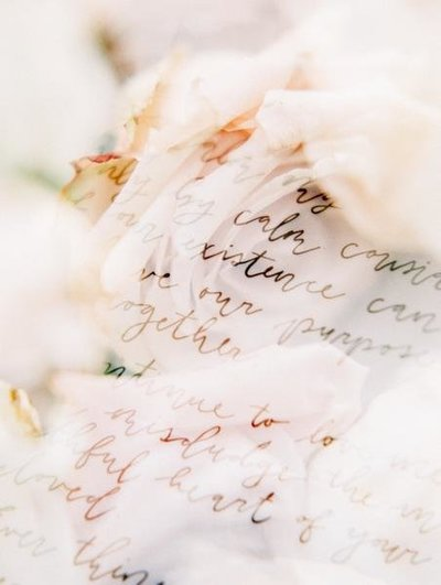 Letters to Rose