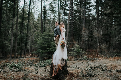 PNW Inspired Cabin Forest Elopement Wedding Planner