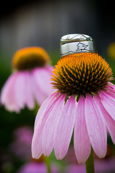 Wedding Rings photographed with pink flowers