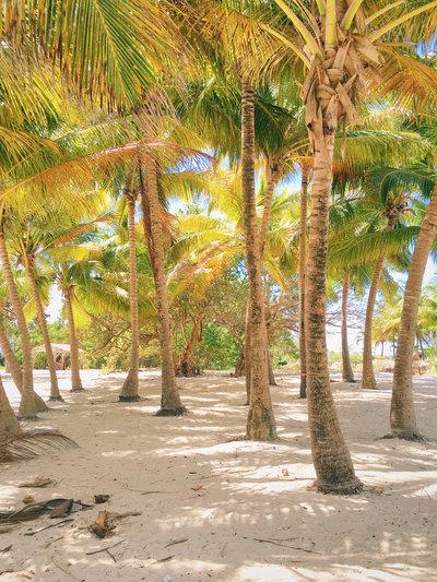 TianaSimpsonPhotography-Guadeloupe-003