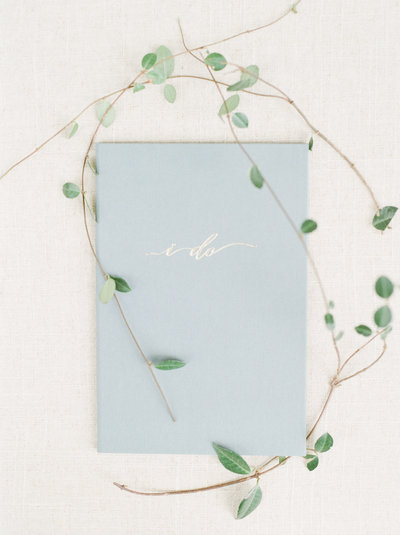 "Wedding Story Writer blue vow book with ""I do"" on the cover surrounded by green ivy"