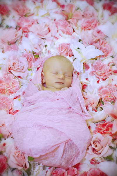 Sleeping Newborn Baby Swaddled on a bed of pink flowers
