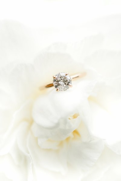 rose gold engagement ring shot on a white rose