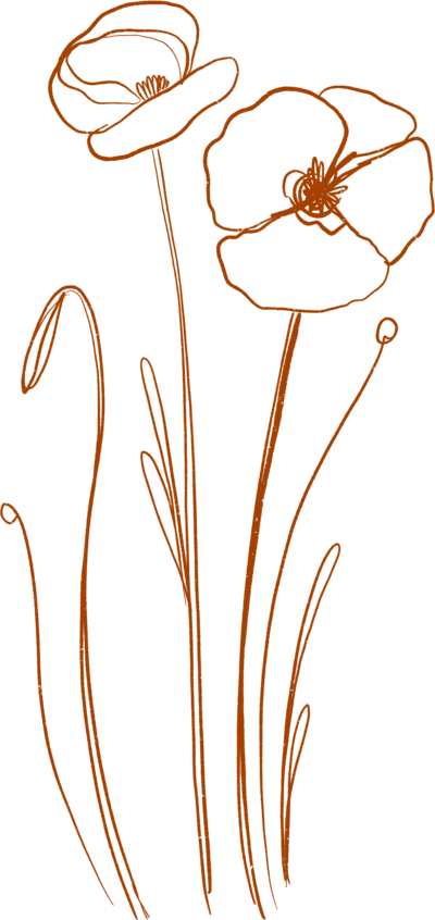 DaniPurington-Flowers-Orange-0