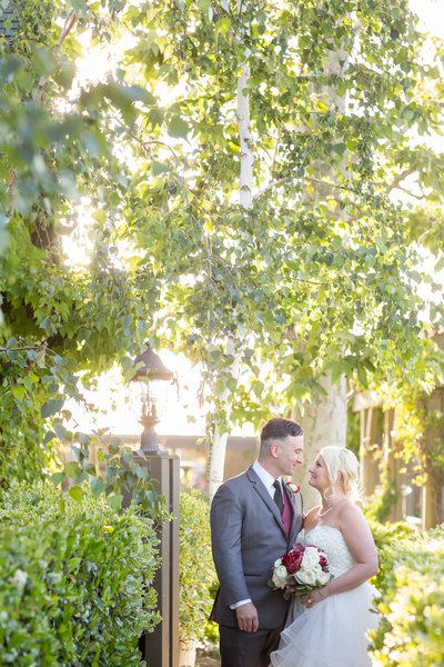 Bride and Groom under tree with pretty light at Ponte Winery
