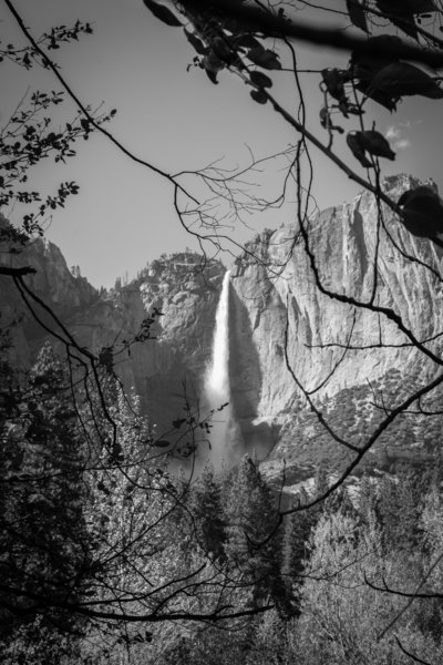 Looking out across the Yosemite valley toward the upper yosemite falls landscape photography waterfall decoration