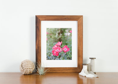 Rose Garden framed photo