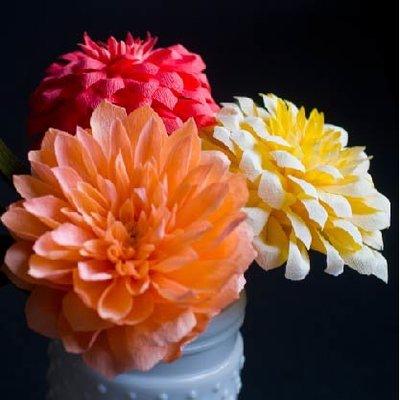 Seattle Floral Design