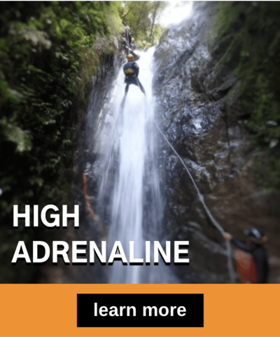 High Adrenaline