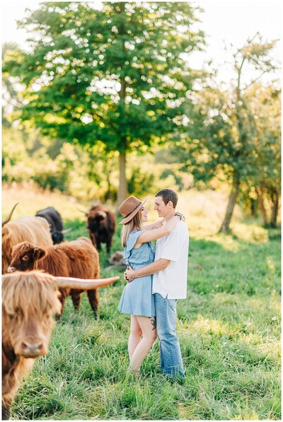 Highland cattle farm anniversary session.