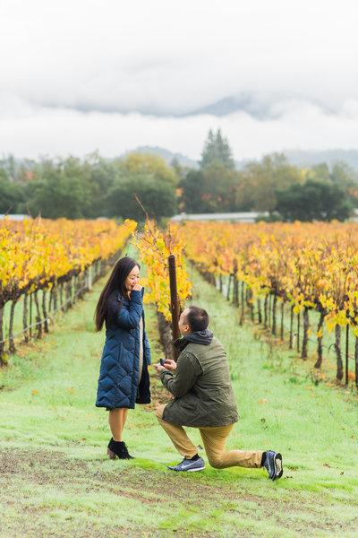 Perry + Olivia Napa Valley Proposal-6676