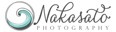 nakasato logo final