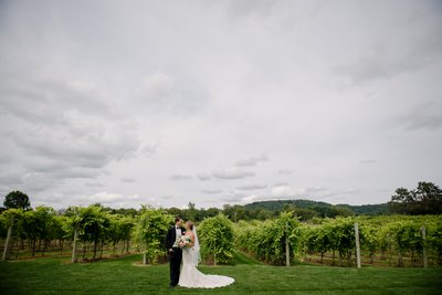 Wisconsin Winery Wedding Photos