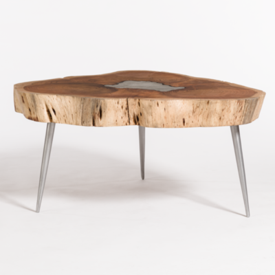 Tree trunk coffee table with metal legs from Hockman Interiors