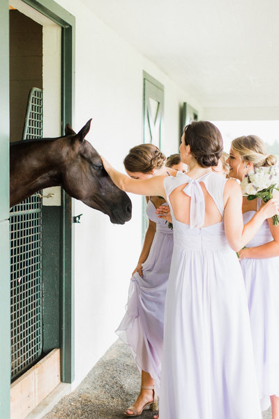 38_king_family_vineyard_wedding_horses