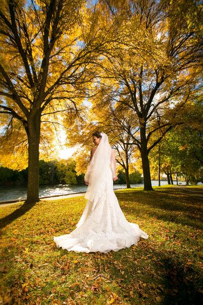 Elegant Green Bay Fall Wedding Photos by Amenson Studio-0103-2