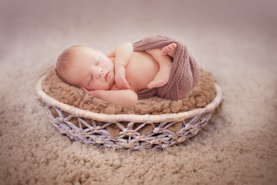 traverse-city-michigan-newborn-photography-2