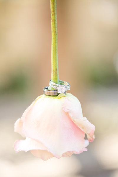 ElegantBackyardWedding_0031