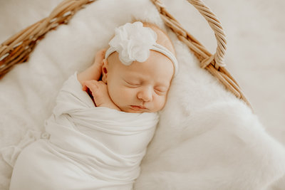 yetta reid photography loudoun county photographer newborn-4